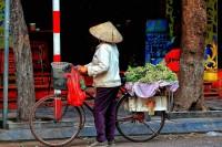 Découverte du Vietnam en famille