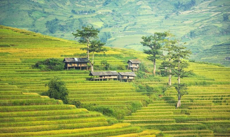 Thaïlande Essentielle