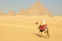Splendeurs des pharaons